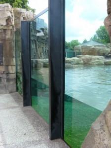 Aquarium Glass Design